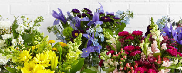 Proflowers Coupon Codes For October Discount Codes The